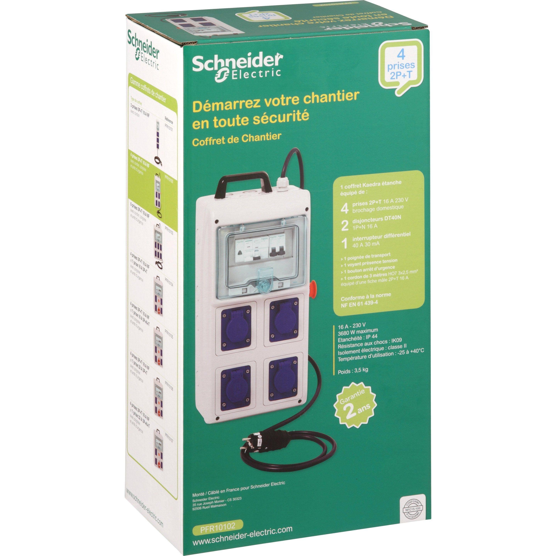 Coffret De Chantier étanche 4 Prises 2pt Schneider Electric