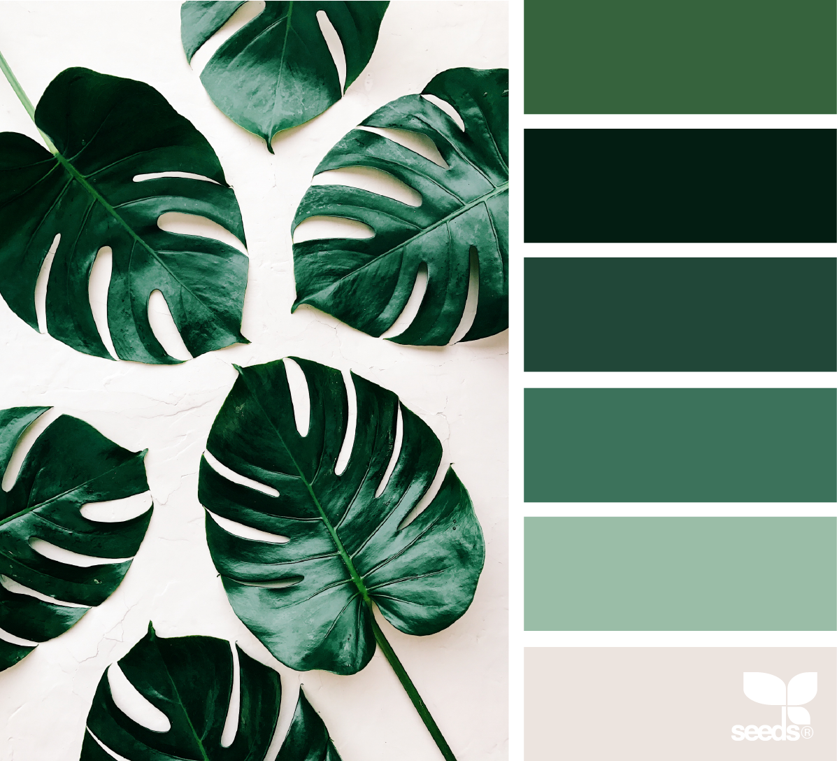 An Inspiring Colour Palette Full Of Lush Tropical Greens
