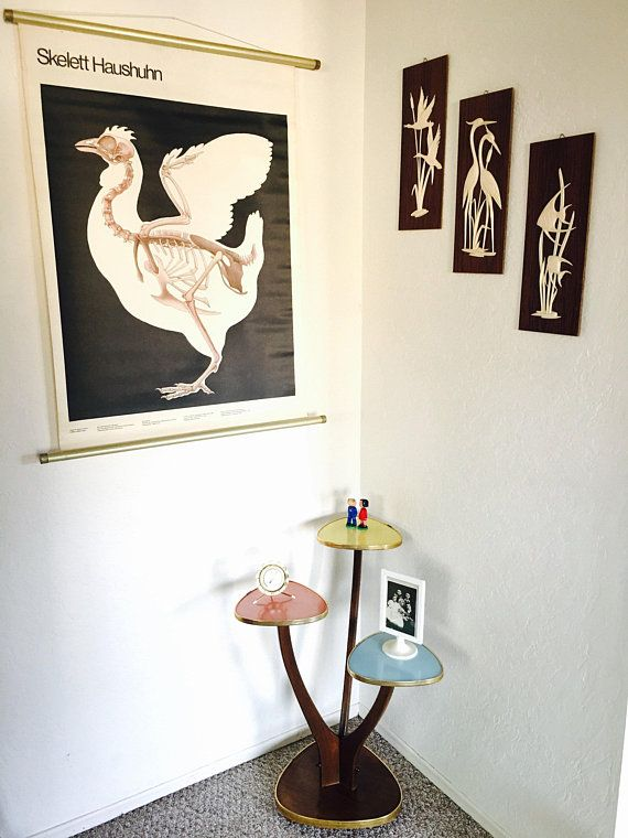 Educational Pull Down Poster, Chicken Pull Down Chart, German ...