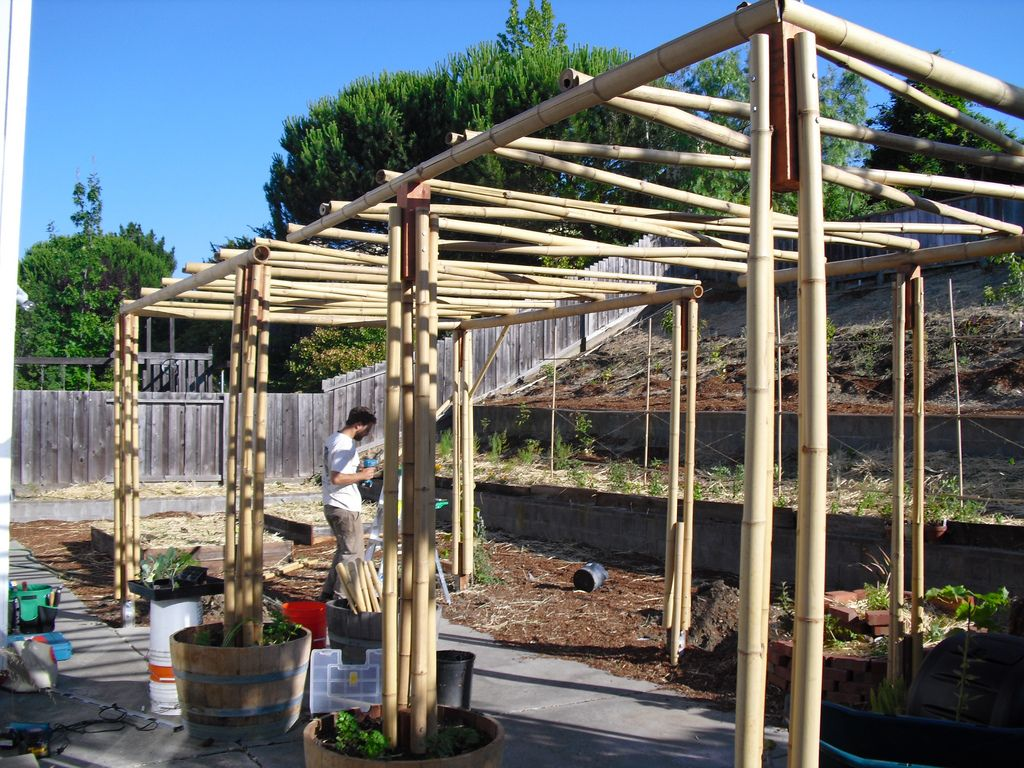 How To Make A Bamboo Arbor  Google Search