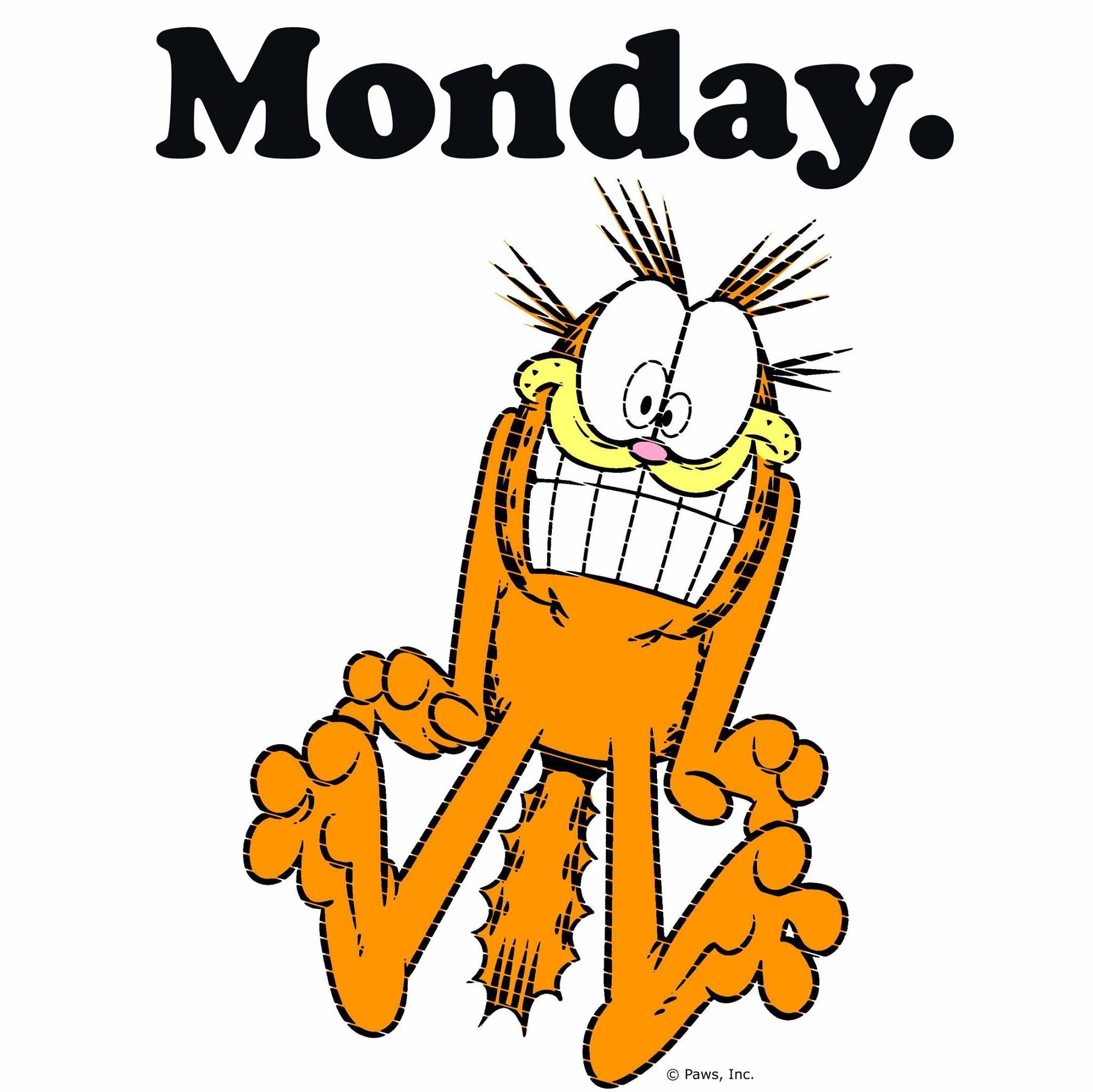 It's Monday! Monday humor, Garfield, Snoopy funny