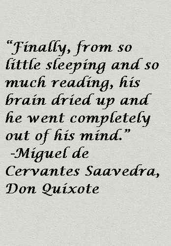 a literary analysis of don quixote Don quixote: bridging reality and fiction   literary theory and criticism 21  the level at which don quixote has placed his lady dulcinea.