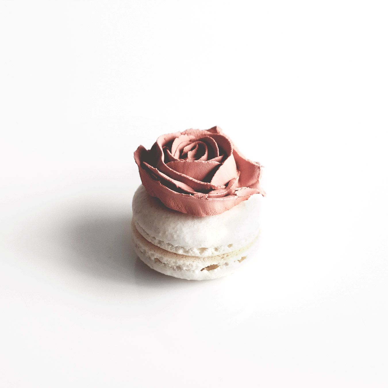 Photo of Macarons in Bloom