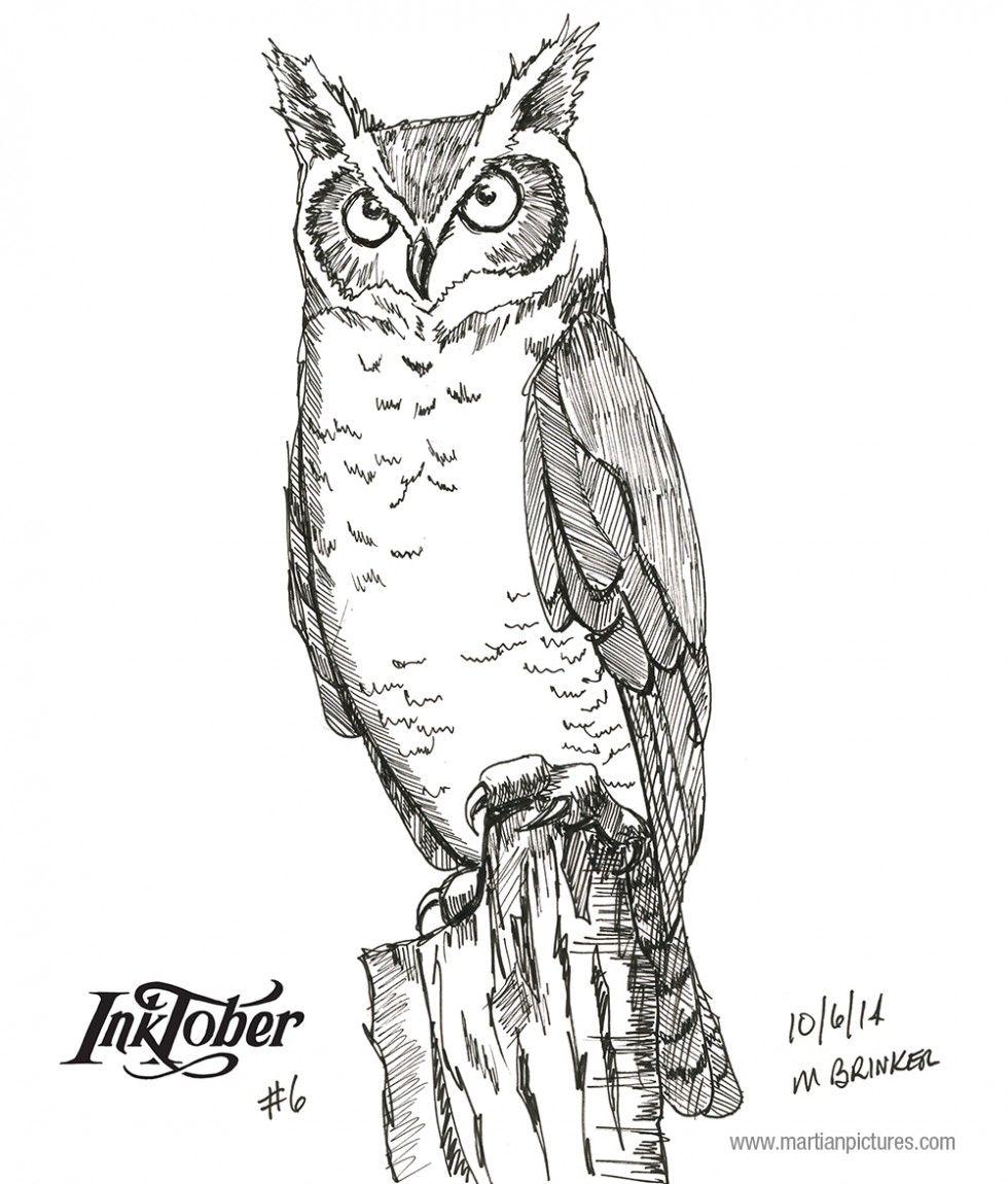 Inktober 2014 drawing 6 - Great Horned Owl | My Artwork | Pinterest