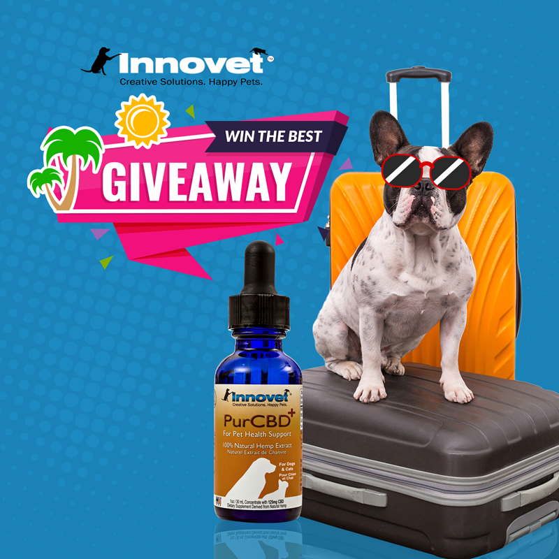 WIN 150 WORTH of PET PRODUCTS! cbdoil dog giveaway