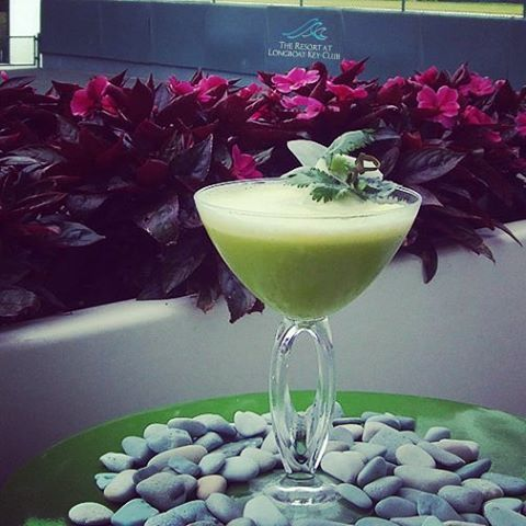 #ThirstyThursday with a healthy twist at The Resort! The Cupine Smash includes cucumber, pineapple and cilantro! #Yum #HealthyLiving #JuiceItUp