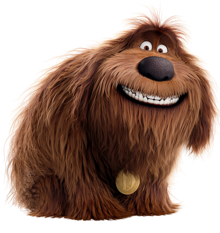 Duke (The Secret Life of Pets) in 2020 Pets movie