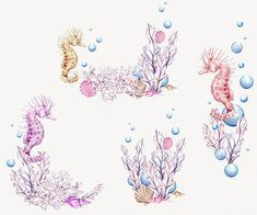 ocean watercolor clipart seahorse pink purple sea illustration