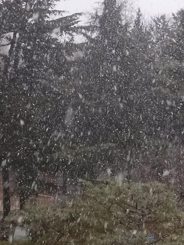 cool Today is the First Snow in Korea, And Actor Kim Soo Hyun will be filming for 'You Came From The Stars'