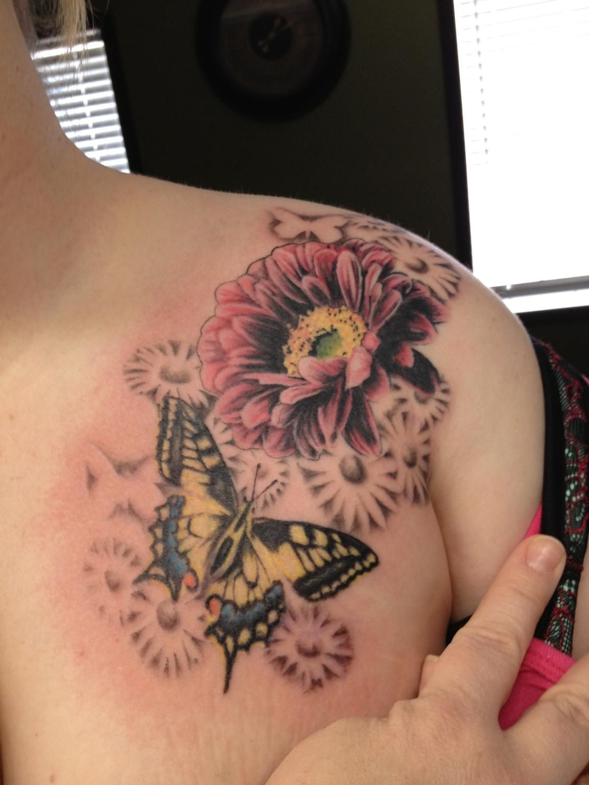 Gerbera Daisy with Butterfly by