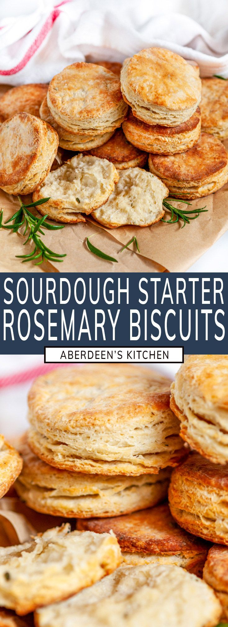 Leftover Sourdough Starter Rosemary Biscuits Aberdeen S Kitchen Recipe In 2020 Sourdough Starter Rosemary Biscuits Recipes