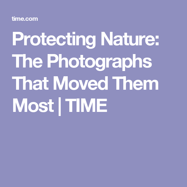 Protecting Nature: The Photographs That Moved Them Most | TIME