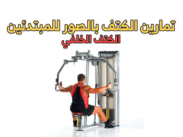 تمارين الكتف بالصور للمبتدئين Shoulder Workout Workout Gym