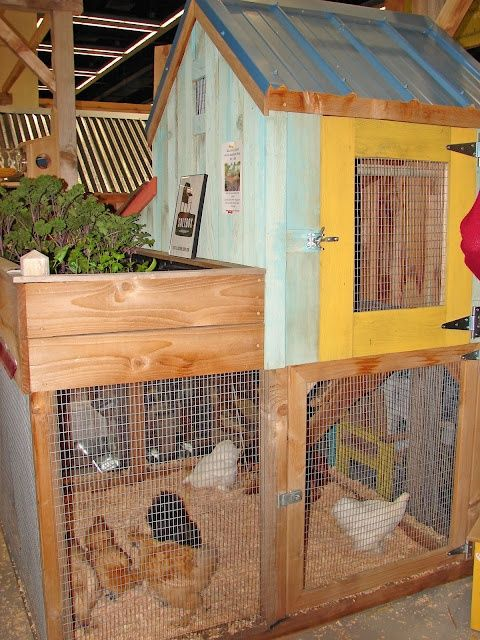 Small Space Chicken Coops Chicken Coop Chicken House Backyard Chicken Coops Poultry House Plans for a small chicken house