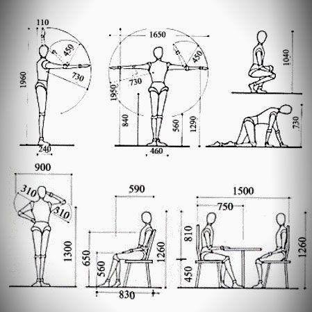 La antropometr a en el dise o de muebles architecture for Estudio de arquitectura en ingles