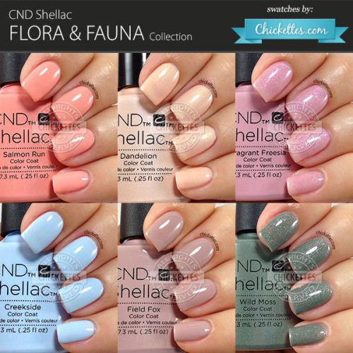 Cnd Shellac Flora Fauna Collection Swatches By Ettes Nail Colors