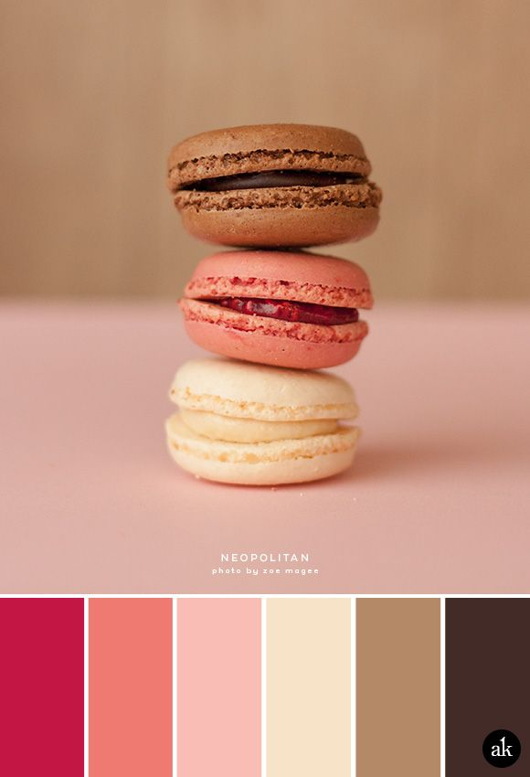 A Neopolitan Macaron Inspired Color Palette Strawberry Pink Vanilla Chocolate Brown