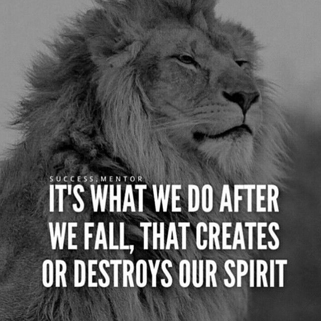 Never let a fall destroy your spirit, find strength in