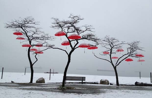 Snowy day in Vancouver - photo of umbrella installation in the snow at Spanish Banks beach.