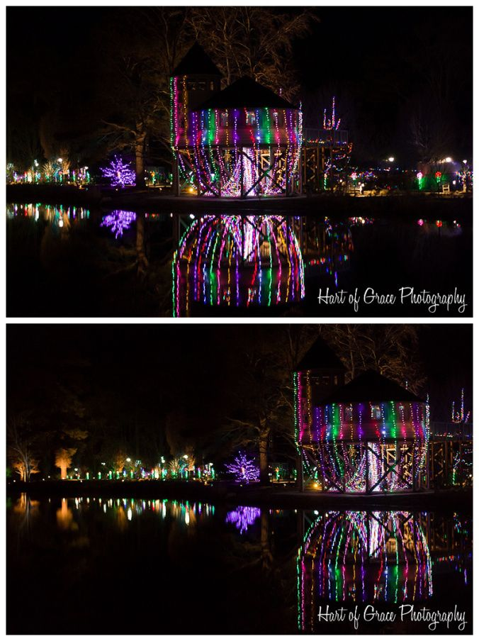 Dominion GardenFest of Lights (With images) Lewis ginter