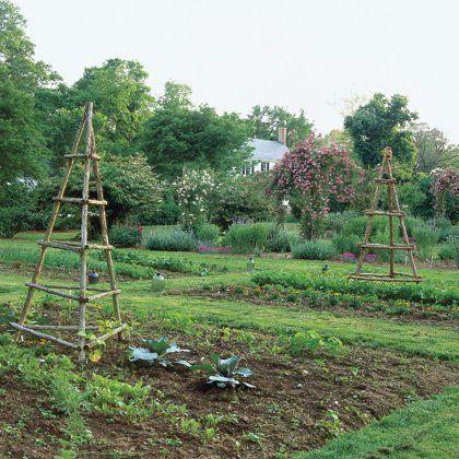Vegetable Plots at Tuckahoe Plantation