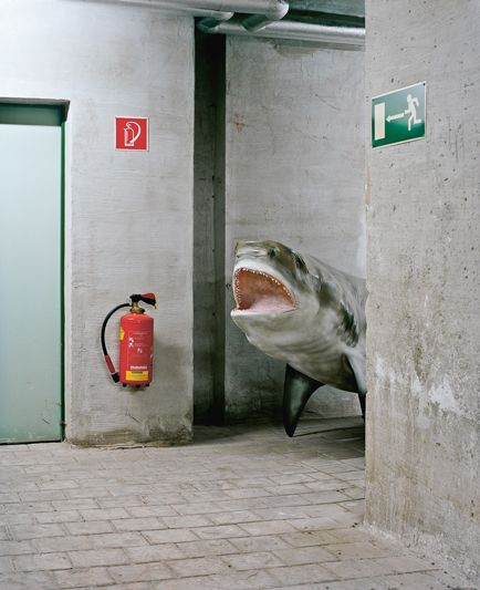 Behind closed doors: Klaus Pichler photographs areas not accessible to the public in Vienna's natural history museum