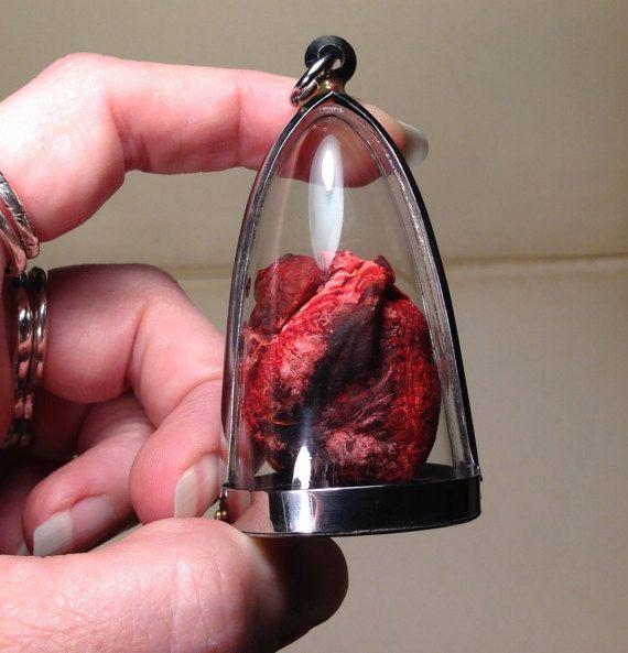 Token From The Heart: Real Dry Preserved Feline Heart Large Pendant ...