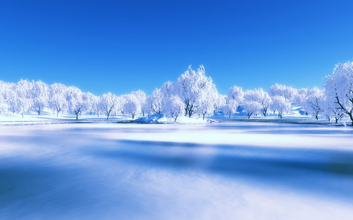 winter scenery Winter Scene December White HD