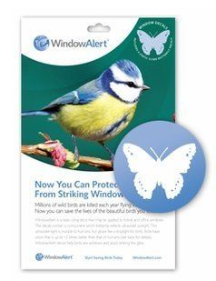 Window Alert Butterfly Decals By Window Alert Httpwwwamazon - Window alert decals amazon