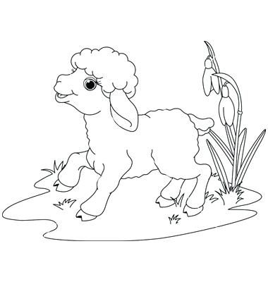 Hickory Dickory Dock Coloring Page Lamb Coloring Page Hickory