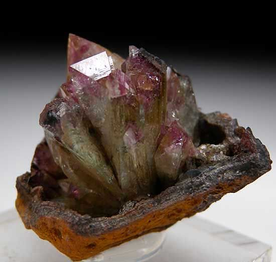 Cluster of lustrous Adamite crystals with typical chisel-shaped terminations in a spray formation in a limonite vug. This i specimen has the rare and desirable purple coloration.