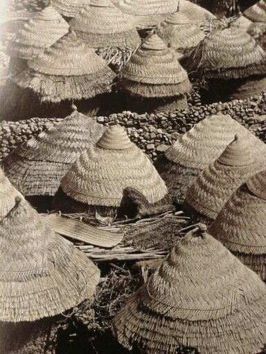 World Bedroom Furniture: Roofs In #Cameroon From René Gardi Book