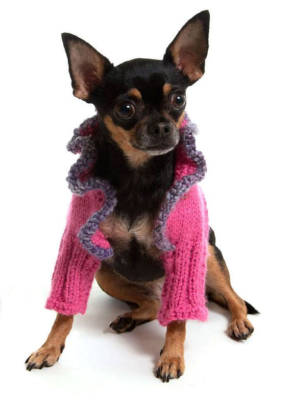 Haute Woof-toure! Deep Pink Dog Sweater Shrug with Heather Purple by thedoggiemarket, $28.00