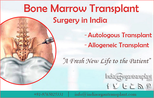 Bone Marrow Transplant In India Is Helping People Reclaim Their Quality Of Life Bone Marrow Bone Marrow Failure Abnormal Cells