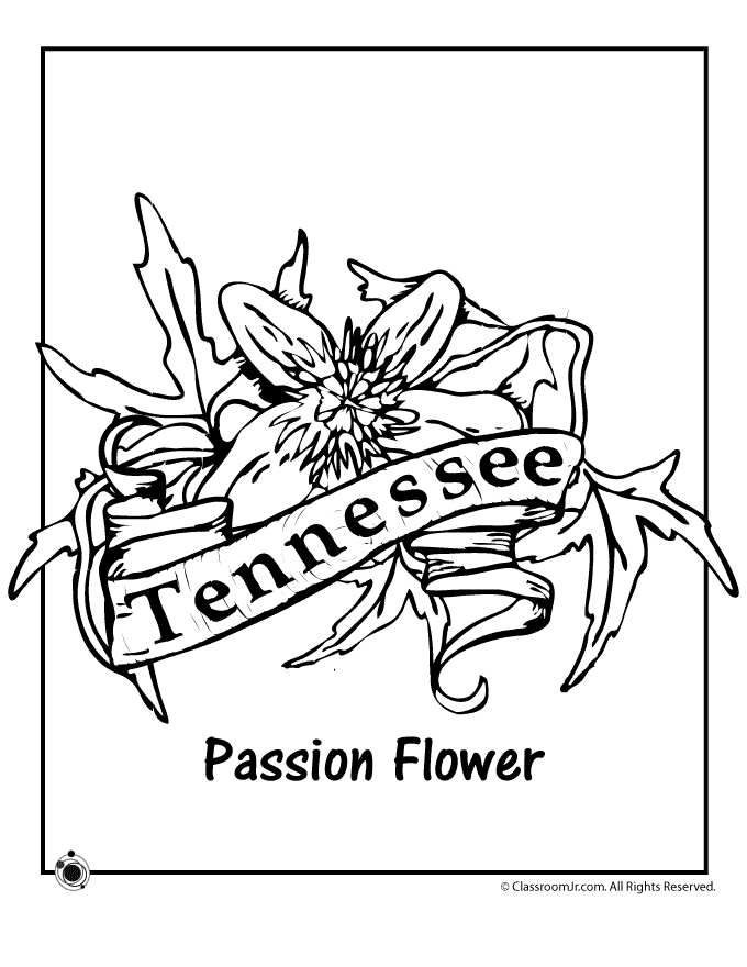 Tennessee State Flower Coloring Page Woo Jr Kids Activities Flower Coloring Pages Coloring Pages Free Coloring Pages