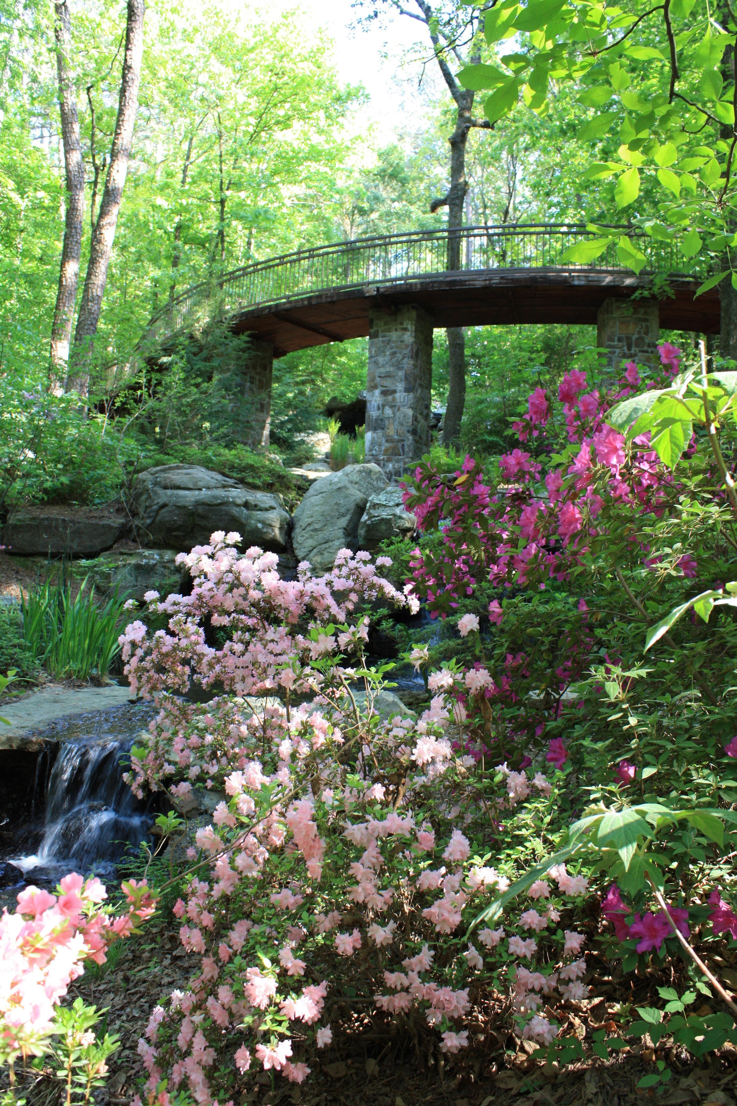 Garvin Gardens Hot Springs Arkansas Flora Pinterest Hot