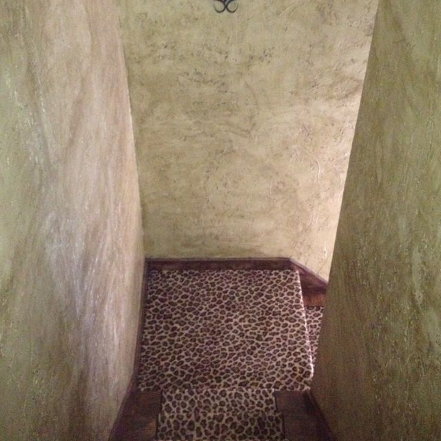Leopard runner with textured walls