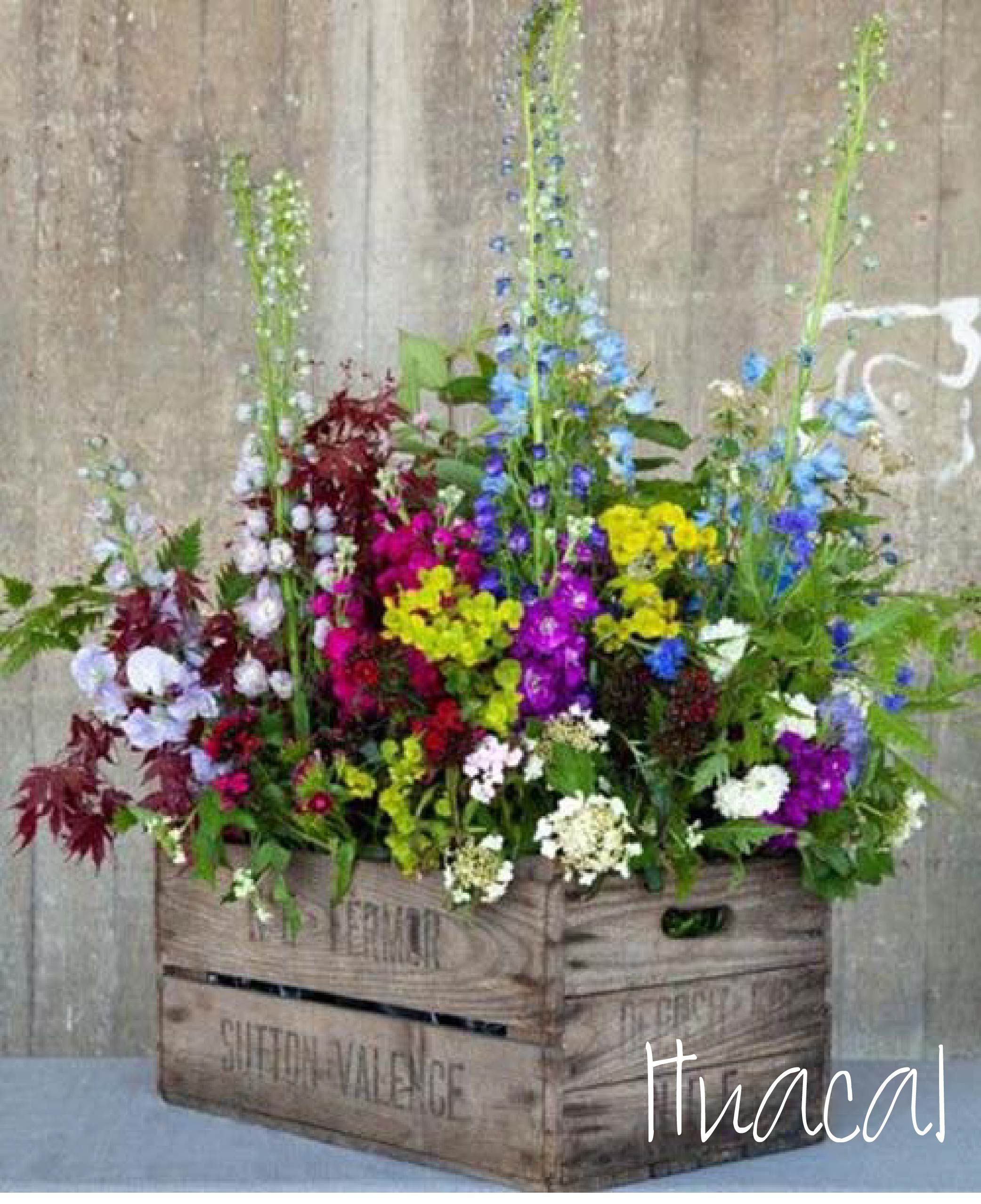17 Brilliant Things To Do With Old Wooden Crates One Crazy House Container Flowers Diy Planters Outdoor Wooden Flower Boxes