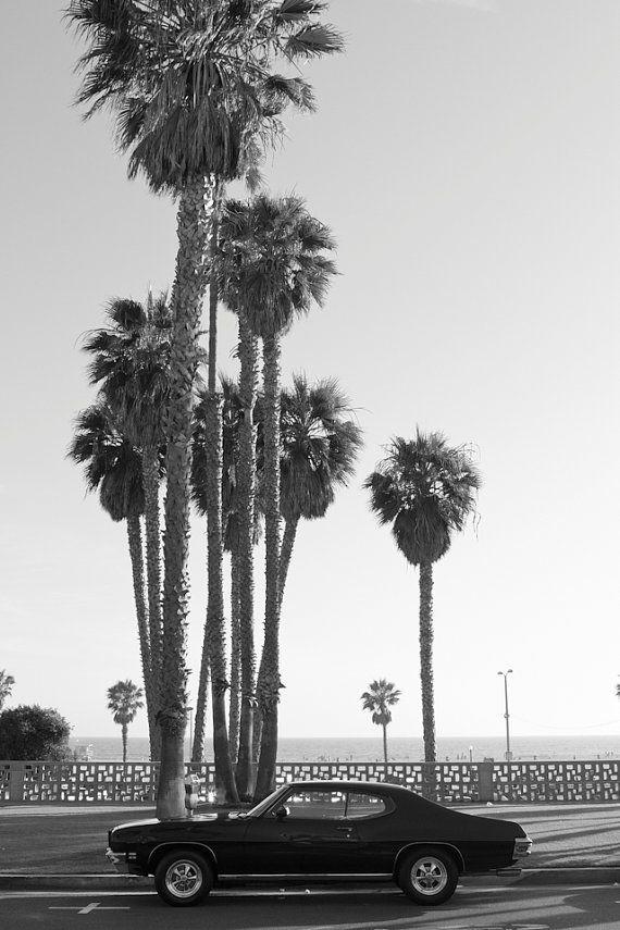 California Photography Ocean Avenue Santa Monica Wall