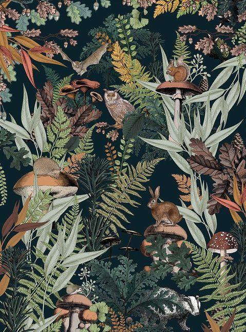 Papier peint automne hiver  : jungle, panoramique,