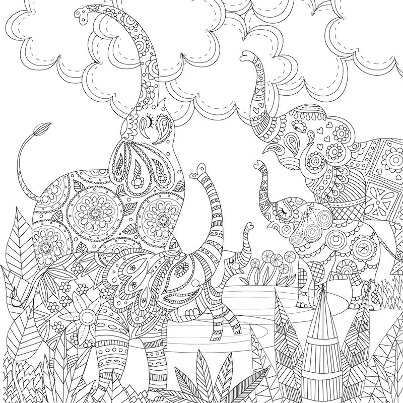 Zentangle Abstract Elephant Coloring Pages for Adults #6854 ... | 800x800