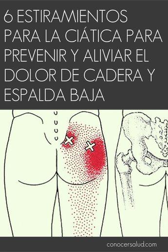 Pin de Rodolfo Servin en Anatomia   Pinterest   Espalda baja ...