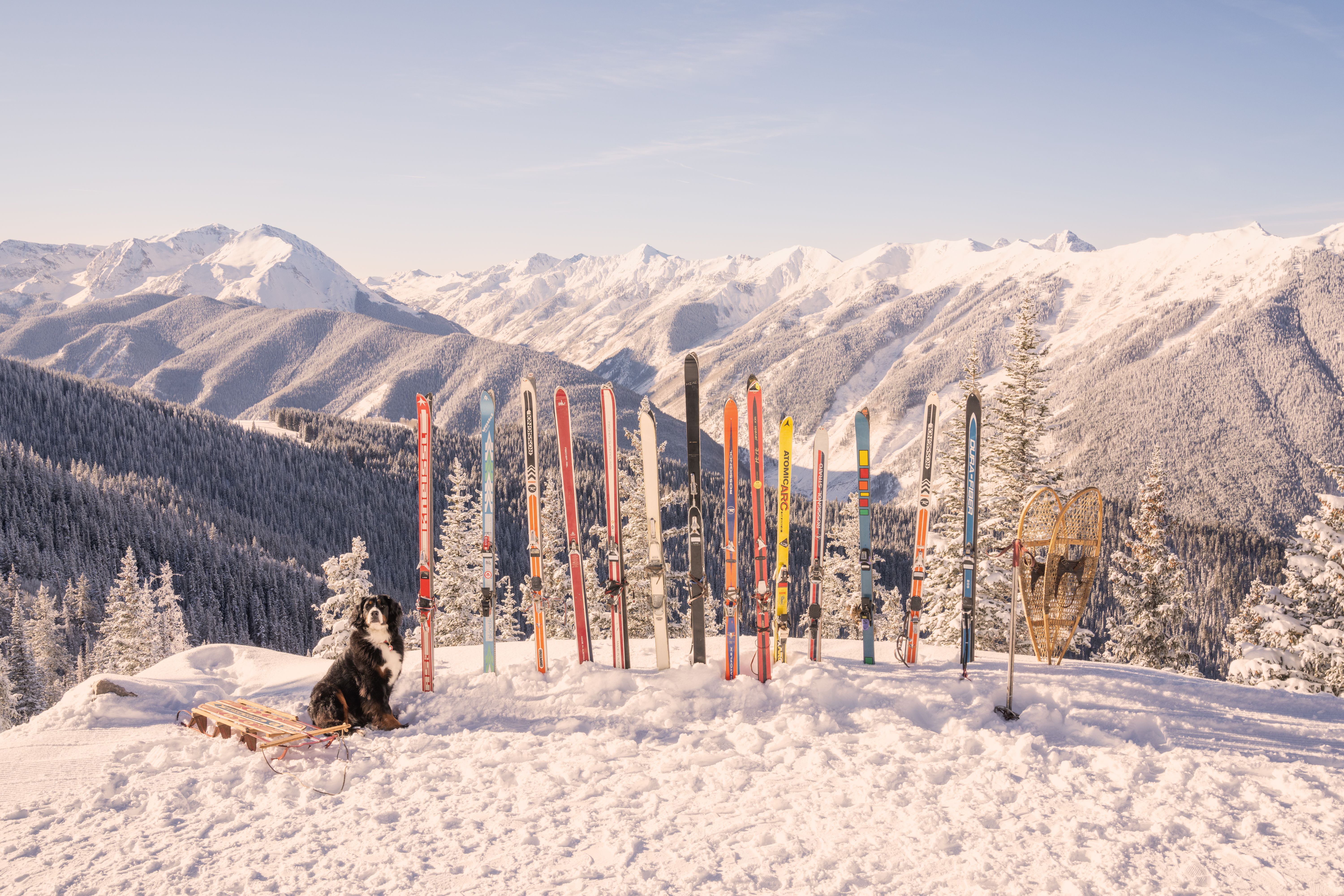 Brand New Introducing Gray Malin in Aspen (+ a Giveaway