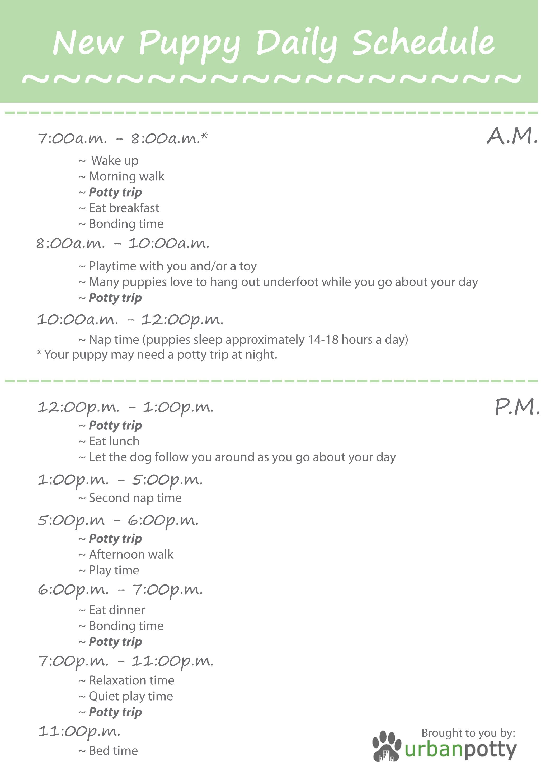 Puppy Schedule Template Balep Midnightpig