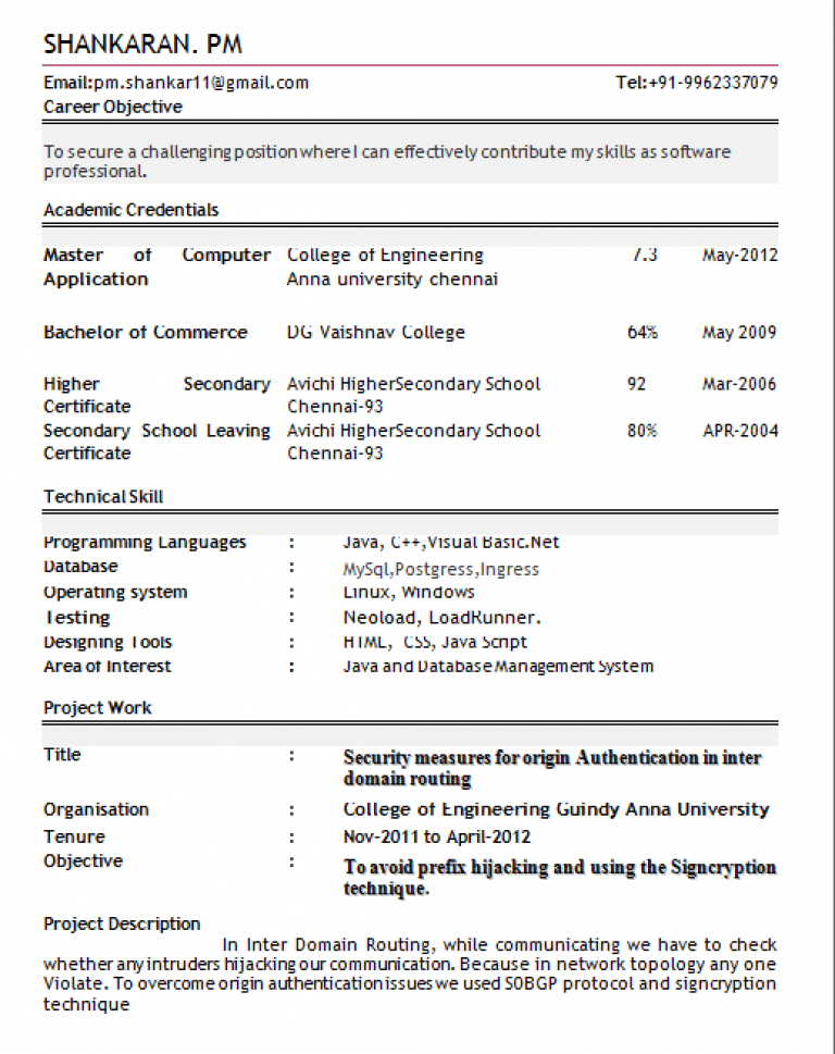 Professional Resume For Freshers inside Professional