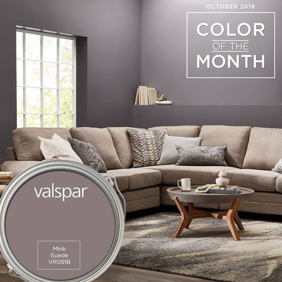 valspar mink grey google search in 2020 with images on valspar paint colors interior id=84394