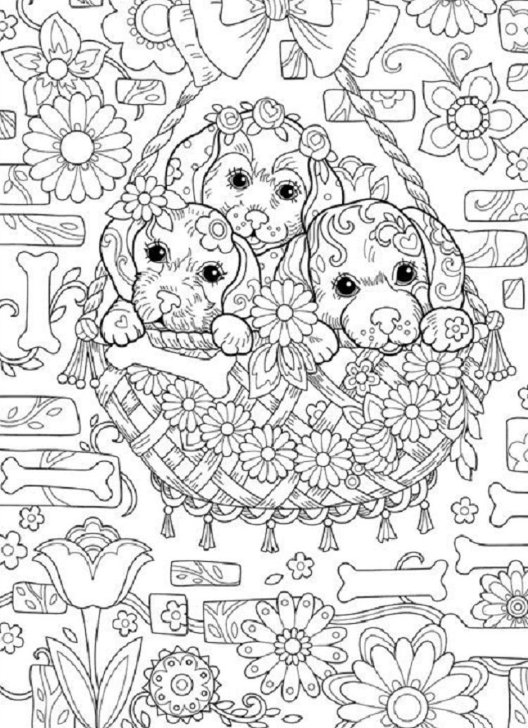 Puppy Coloring Pages Hard Coloring