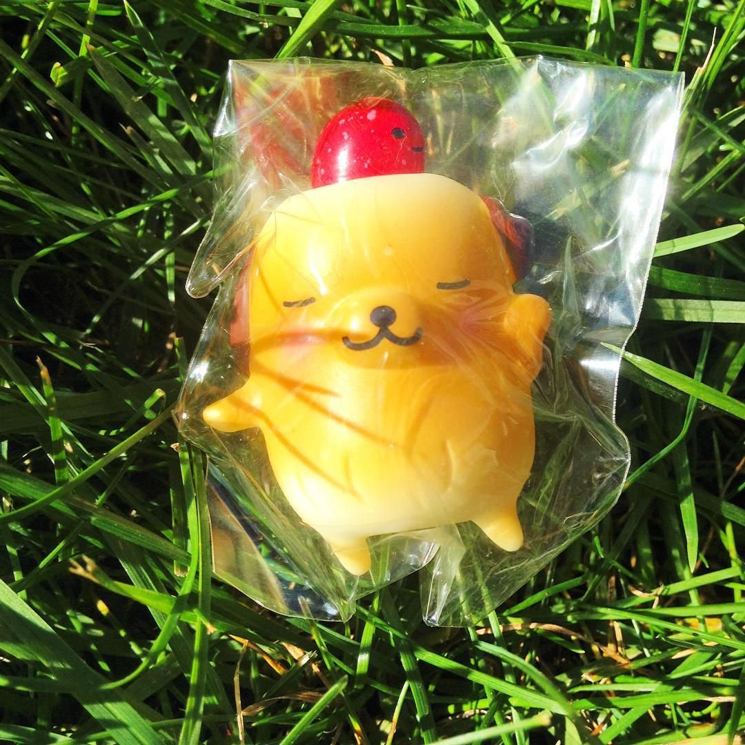 """""""A darling ibloom squeeze toy! #squishy #squishies #ibloom #kawaii #squeezetoy"""""""