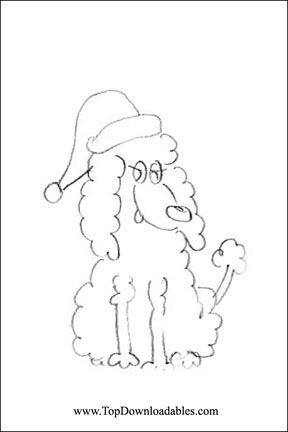 Detailed Free Poodle Printable Coloring Page Printable