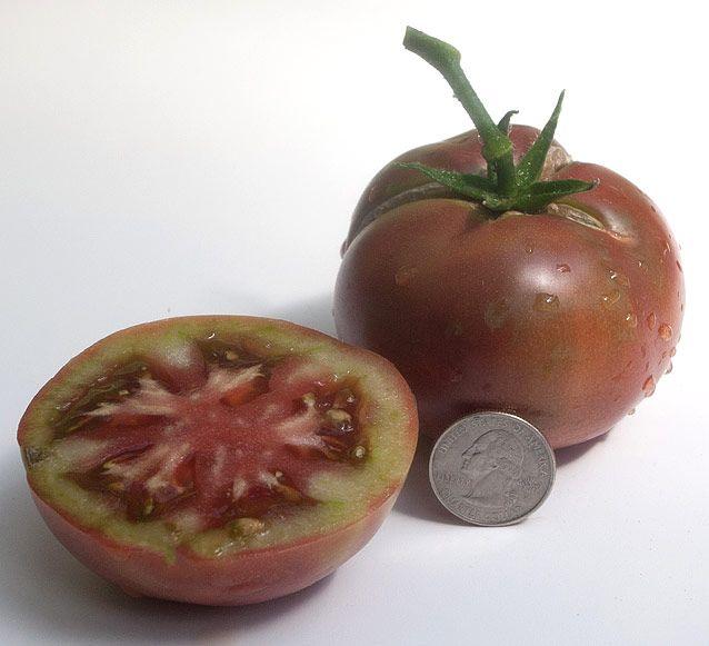 2f762a2798bf6b969f5f04b4a64b7ae1 - Gardeners World Magazine Free Tomato Seeds
